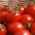 کیا آپ جانتے ہیں کہ ٹماٹر آپ کو معدے کے کینسرسے بچا سکتا ہے ؟