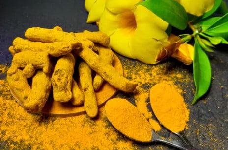 21 Benefits of Raw Turmeric – 21 Health Benefits of Raw Turmeric